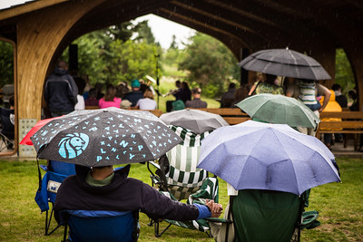 People brave the weather with their umbrellas as they listen to music by the Opera Fairbanks Orchestra Brass at the Georgeson Botanical Garden as part of Summer Sessions' Music in the Garden series.  Filename: LIF-13-3884-3.jpg