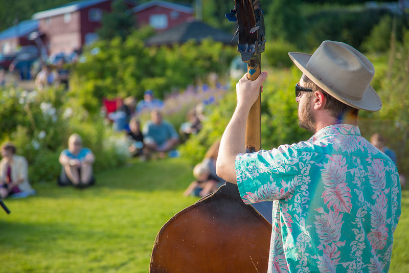 "The local Fairbanks band Zingaro Roots performed before an appreciative audience during one of the Concert in the Garden events sponsored by UAF Summer Sessions.  <div class=""ss-paypal-button"">Filename: LIF-12-3489-078.jpg</div><div class=""ss-paypal-button-end"" style=""""></div>"