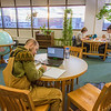 "Students take advantage of the quiet area on the 5th floor of the Rasmuson Library to catch up on some studying on a recent afternoon.  <div class=""ss-paypal-button"">Filename: LIF-14-4045-49.jpg</div><div class=""ss-paypal-button-end"" style=""""></div>"