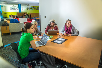 Students mingle and study in the Nook computer lounge in the Bunnell Building on the Fairbanks campus.  Filename: LIF-13-3987-54.jpg