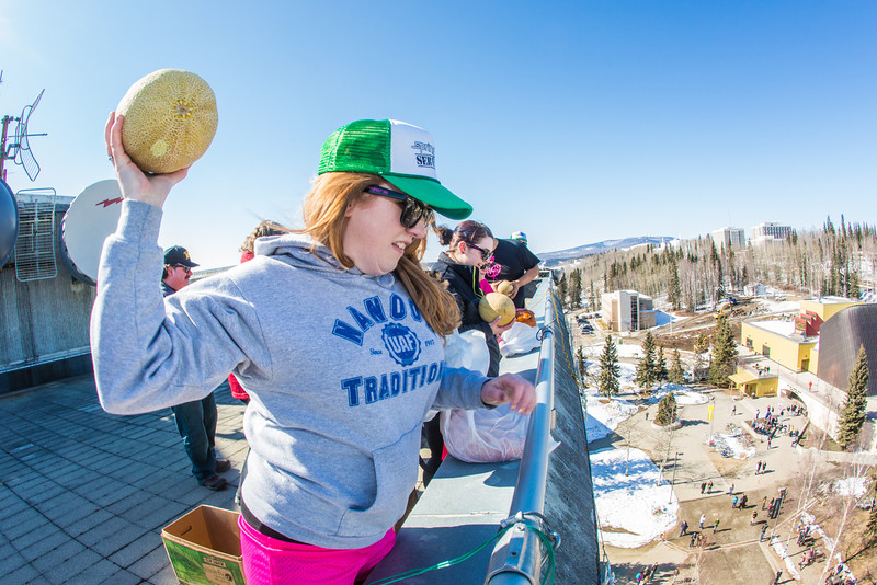 "Nanook Traditions board member Katie Griffin chucks a rotten cantelope from high atop the Gruening Building during the traditional Fruit Drop which officially starts SpringFest on the Fairbanks campus.  <div class=""ss-paypal-button"">Filename: LIF-13-3801-35.jpg</div><div class=""ss-paypal-button-end"" style=""""></div>"