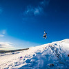 """Students enjoy some of the features of UAF's terrain park on a spring afternoon.  <div class=""""ss-paypal-button"""">Filename: LIF-13-3746-34.jpg</div><div class=""""ss-paypal-button-end"""" style=""""""""></div>"""