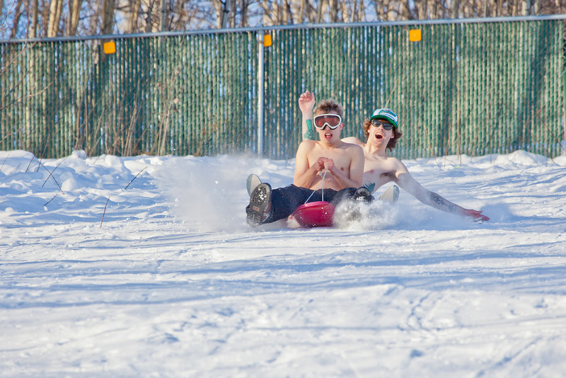 "Bryan Johnson, front, and his buddy Jimmy Donohue spend some quality time on the UAF sledding hill on a nice February afternoon.  <div class=""ss-paypal-button"">Filename: LIF-12-3290-58.jpg</div><div class=""ss-paypal-button-end"" style=""""></div>"