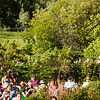 "Summer Sessions host their Music in the Garden series at the Georgeson Botanical Garden.  <div class=""ss-paypal-button"">Filename: LIF-12-3448-10.jpg</div><div class=""ss-paypal-button-end"" style=""""></div>"