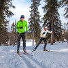 "UAF students Ian Wilkinson and Raphaela Sieber enjoy a morning loop around the campus ski trails.  <div class=""ss-paypal-button"">Filename: LIF-12-3348-08.jpg</div><div class=""ss-paypal-button-end"" style=""""></div>"