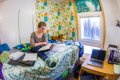Music major Kaylie Wiltersen studies in her Skarland Hall single room.  Filename: LIF-13-3735-24.jpg