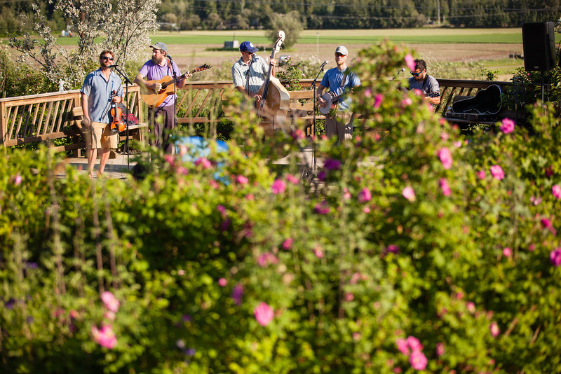 "Summer Sessions features local band The Frosty Bottom Boys at the Music in the Garden series located in the Georgeson Botanical Garden.  <div class=""ss-paypal-button"">Filename: LIF-12-3448-33.jpg</div><div class=""ss-paypal-button-end"" style=""""></div>"
