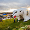 "Kids enjoy running through the inflatable Nanook set up in front of the Patty Center during Starvation Gluch weekend festivities.  <div class=""ss-paypal-button"">Filename: LIF-12-3570-040.jpg</div><div class=""ss-paypal-button-end"" style=""""></div>"