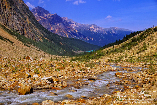 Path of the Glacier Trail in Jasper National Park