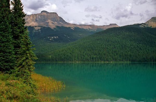 Emerald Lake and Wapta Mountain