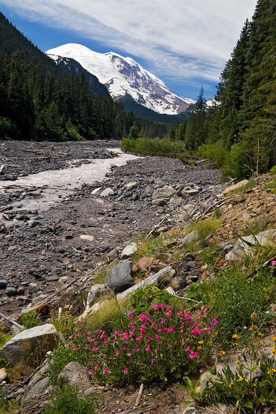 Mount Rainier and White River
