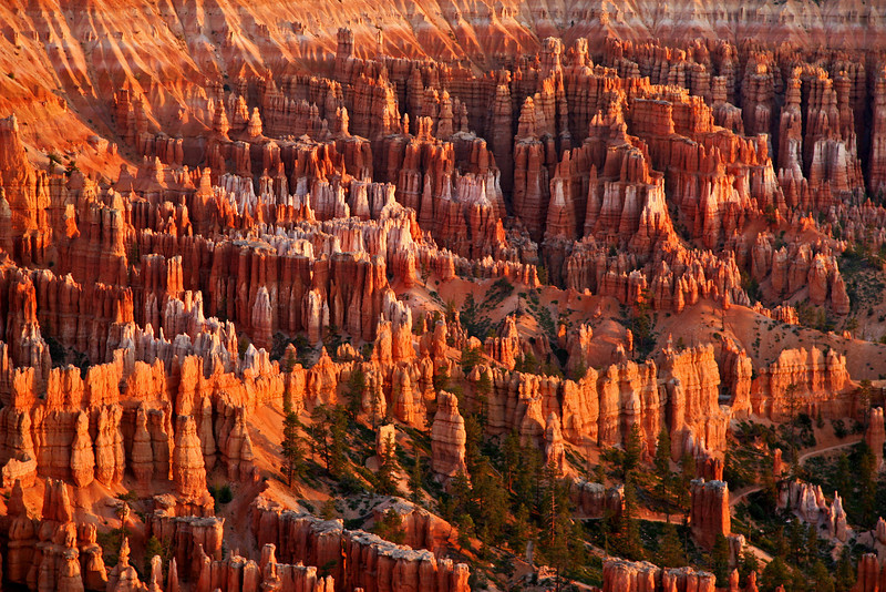 Bryce Amphitheater at Sunrise