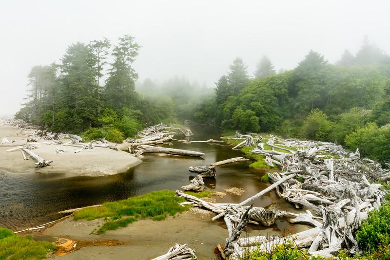 Kalaloch Creek