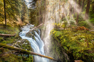 Sol Duc Waterfalls In the Morning