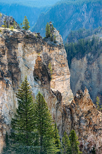 Walls of the Yellowstone Canyon