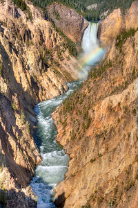 The Yellowstone Canyon and the Yellowstone River with the Lower Falls and a rainbow. The rainbow only occurs during the month of July for about 10 minutes at about 9:10AM.