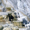 Mammoth Hot Springs Detail