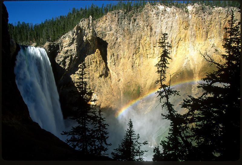 Grand Canyon of Yellowstone Lower Falls Rainbow
