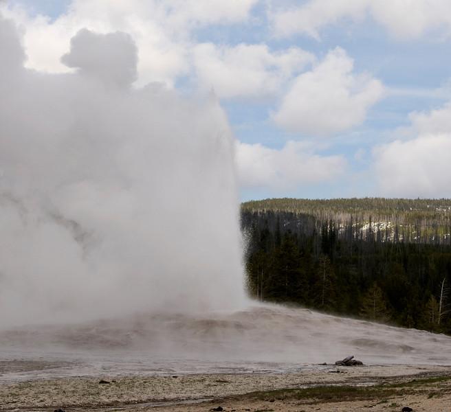 Old Faithful erupts - Yellowstone