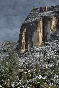 Afternoon sunlight illuminates a massive granite cliff which rises above a snow covered forest after a winter storm in Yosemite National Park.