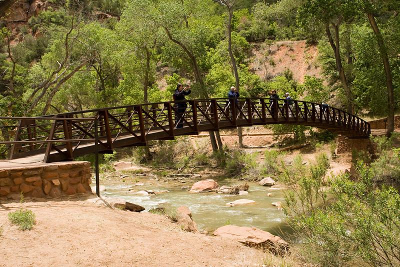 Pedestrian bridge on Emerald Pools Trail