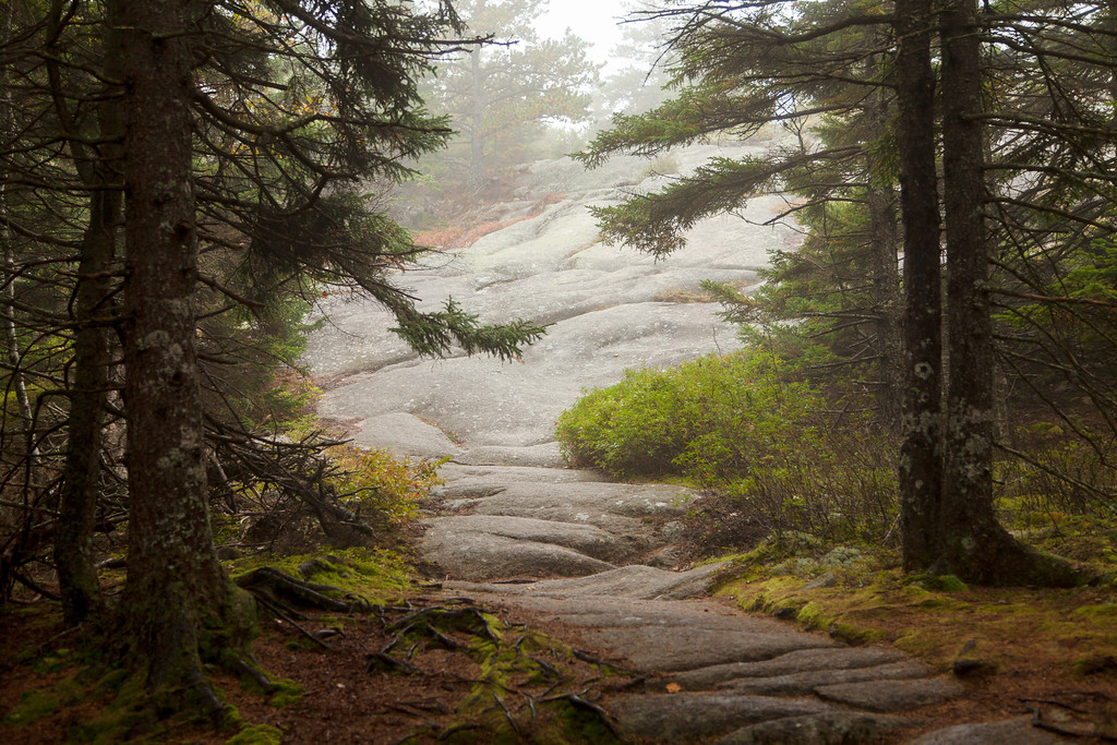 Beech Mountain, Acadia National Park, Maine, USA