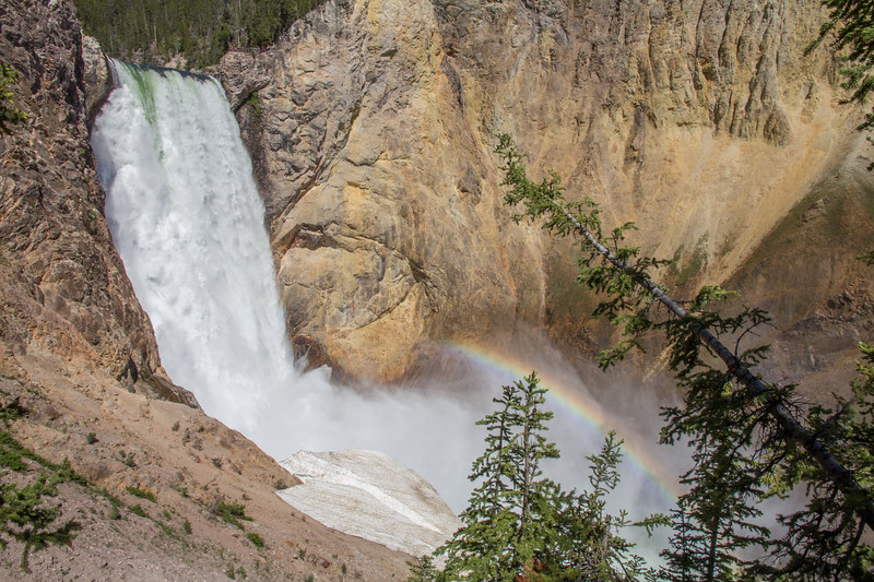 Lower Falls of the Yellowstone River in Yellowstone National Park, Wyoming, USA