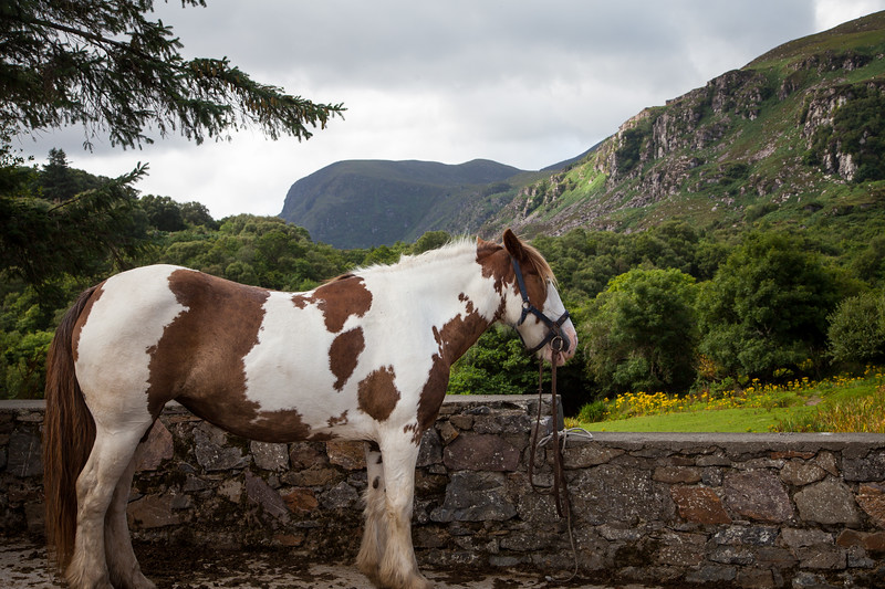 Gap of Dunloe, Killarney National Park, Co. Kerry, Ireland