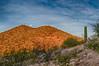 5.26.2013 - A late spring sunrise in the Sonoran Desert near Tucson.