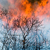 The cool-hot image relfects the ying and yang of fire. It is a critical ecological process, but can have disasterous short-term consequences when innapropriately appied