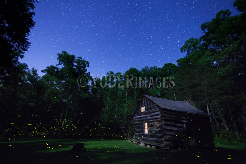 Lightning Bugs at the Carter-Shields Cabin, Cades Cove, Great Smoky Mountains National Park