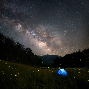 Lightning Bugs and Milky Way at a remote mountain valley campsite, Great Smoky Mountains National Park.