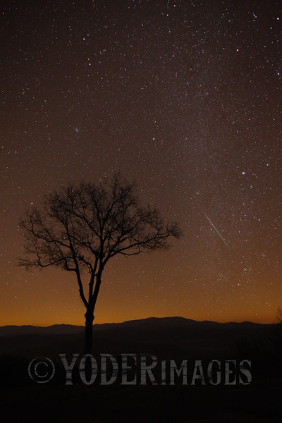 Geminid meteor, Foothills Parkway, Great Smoky Mountains National Park<br /> 3rd Place, Professional Division, 2013 Wilderness Wildlife Photo Contest