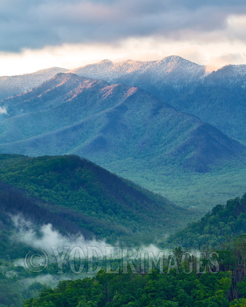 """""""Blackberry Winter"""" on Mt. LeConte, Great Smoky Mountains National Park"""