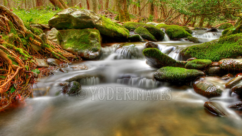 Rowan's Creek, Cades Cove, Great Smoky Mountains National Park