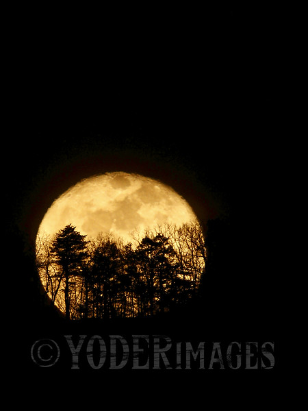 Full moon rising over Chilhowee Mountain, Walland, TN