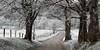 Hyatt Lane, Cades Cove, Great Smoky Mountains National Park