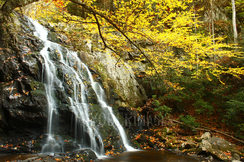 Upper Spruce Flats Falls, Great Smoky Mountains National Park