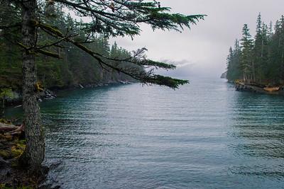 Whittier Water