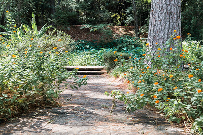 Hodges Gardens in Louisiana.