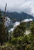 Yosemite National Park in May 2015.