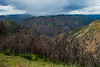 Stanislaus National Forest, California - May 2015.