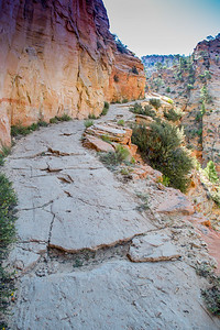 East Rim Observation Point Trail in Zion National Park