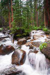 Colorado Streams
