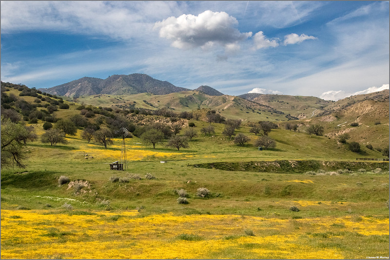 Spring Afternoon, Hwy 25, California, March 19, 2016