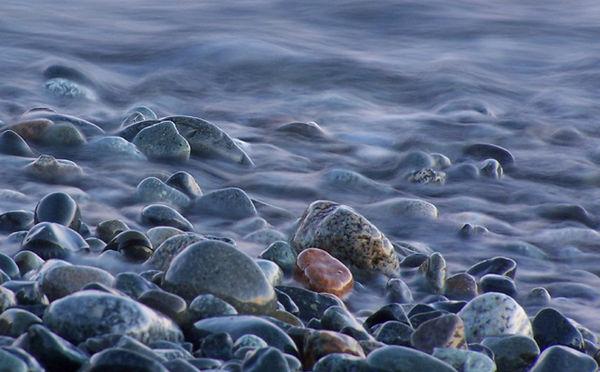Velvet Tide