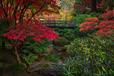 Autumn Moon Bridge