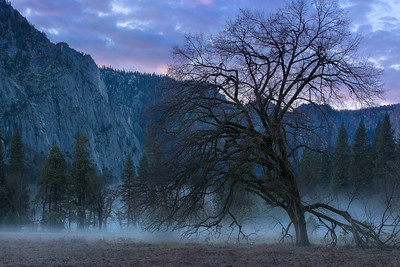 Yosemite Before Winter