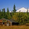 Wrangell-St Elias Cabin