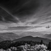 Black and White Ridges